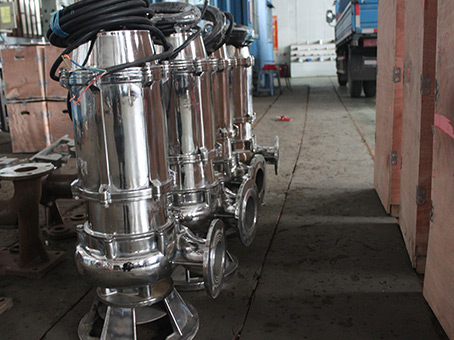 WQ(D)P不锈钢污水潜水泵