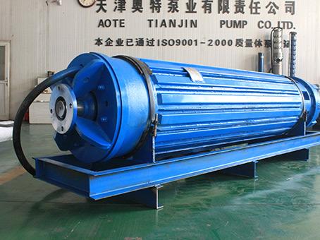 1242-1295高压潜水电机